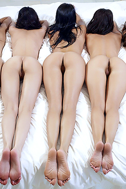 Five Beauty Brunette Babes